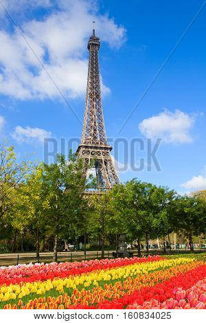 eiffelTower in sunny spring day with flowers in Paris, France