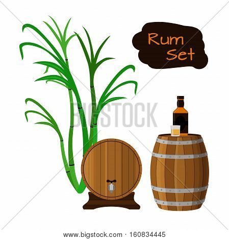 Rum set. Sugar cane helm barrels glass bottle of rum Flat vector style