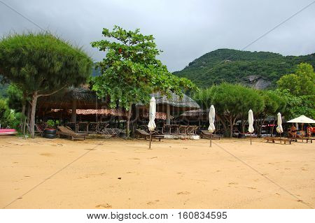 Paradise beach of Vietnam, fine yellow sand, white umbrellas, tents with a thatched roof, lots of plants, herbs, bushy conifers, deciduous, high hill, a mountain all covered with green