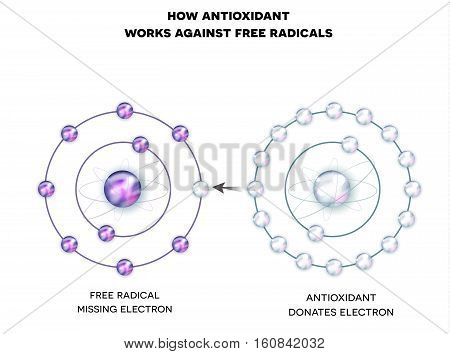 How Antioxidant Works Against Free Radicals. Antioxidant Donates Missing Electron To Free Radical, N