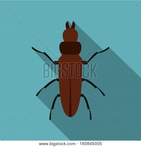 Cockroach icon. Flat illustration of cockroach vector icon for web