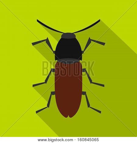 Brown bug icon. Flat illustration of brown bug vector icon for web