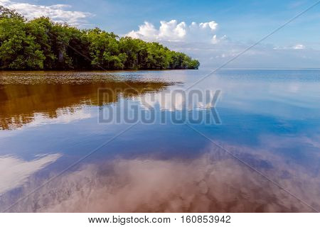 Caroni River mouth open sea through mangroves