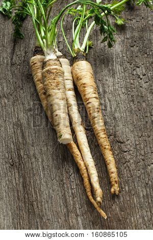 parsley root on old wooden table, rustic style