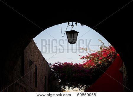 A lantern hanging down from an arch with flowers in the background.