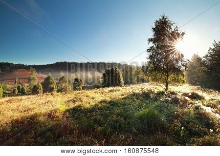 beautiful sunrise over misty hills Totengrund Germany