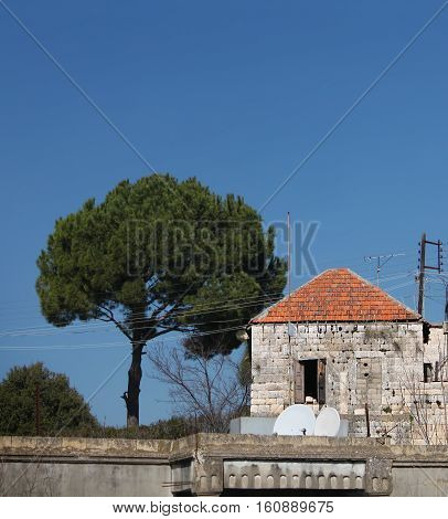 An old, traditional Lebanese house with a pine tree nearby.