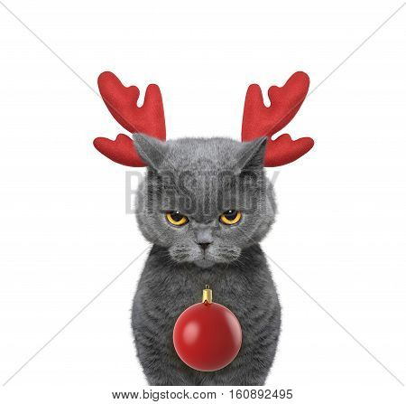 Cute cat in reindeer antlers with xmas ball -- isolated on white