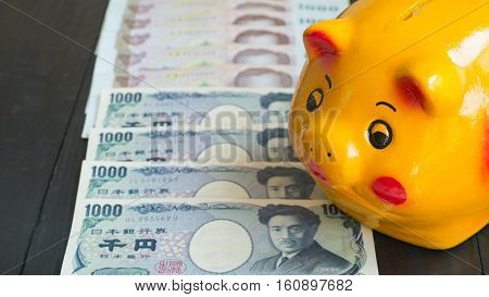 Saving money by Piggy Bank. Piggy bank yellow pig piggy bank Strarting saving money to Wealth.