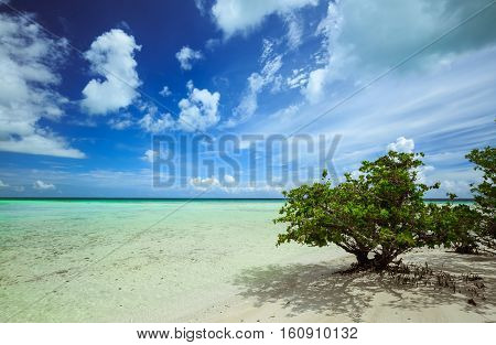 Cayo Coco island beach, Cuba, gorgeous amazing stunning view of cold dark blue dramatic sky's with white fluffy clouds above tranquil turquoise inviting warm ocean poster