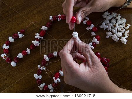 A left handed woman placing popcorn and a fresh cranberry on a needle and thread to make Christmas garland. More popcorn and cranberries along with a partially finished garland are on the wooden tabletop. Photographed from above.