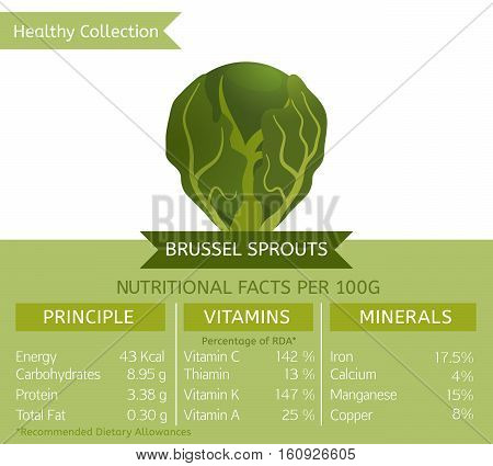 Brussel sprouts benefits. Vector illustration with useful nutritional facts. Essential vitamins and minerals in healthy food. Medical, healthcare and dietory concept.