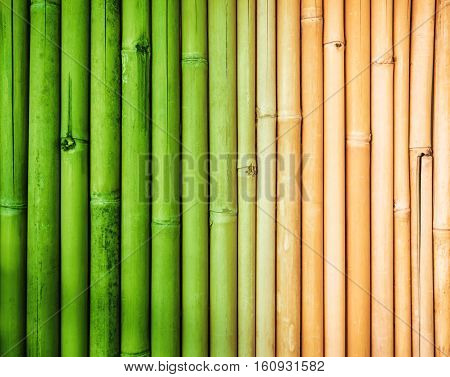 Bamboo texture background, faded bamboo fence wall