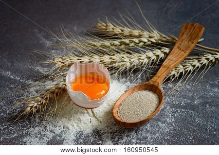 Dry yeast in a wooden spoon baking ingredients concept