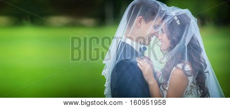 Beautiful young newlyweds going to kiss under veil
