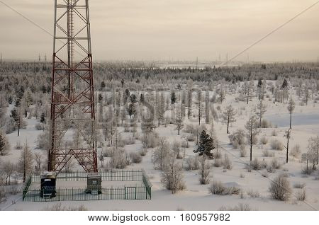 Telecommunications tower and satellite dish telecom network on evening sky with sundown and winter north forest poster