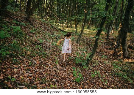 Girl walks in the woods. girl running in the woods