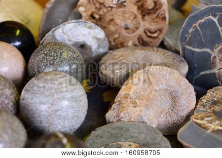 ancient fossils archaeological sites exotic minerals stone