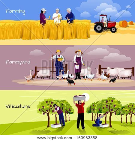 Farming people 3 flat horizontal banners set with farmyard vineyard and crops harvesting isolated vector illustration