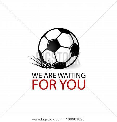Soccer ball vector icon, football ball monochrome illustration. Soccer ball grass. Modern logotype, badge, sticker. Football logo. Write your text. Active sport banner