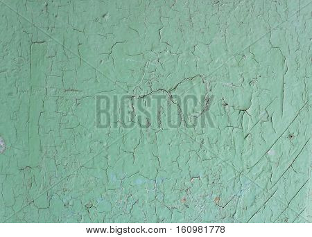 Green old painted cracky wooden background in the daytime