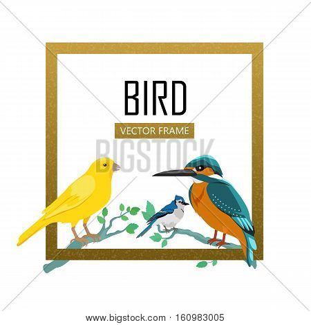 Birds frame vector. Colored wildlife concept in flat design. Word fauna illustration for nature concepts, posters, childrens book illustrating. Canary, kingfisher, blue jay seating on tree brunches.
