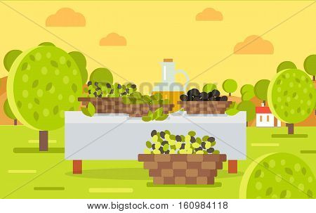 Table with jug of oil and olives and grapes in baskets. Spain festival of olives concept. Picnic table on beautiful landscape with building. Hiking at fresh air. Olive oil making. Vector illustration