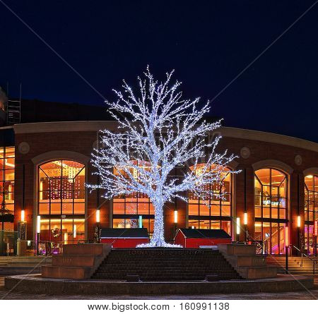 Christmas tree in front of the Rose Theatre at the Lorna Bissell Fountain in Garden Square in downtown Brampton Ontario Canada