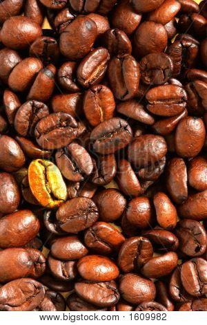 Golden coffee bean - metaphor of originality or leadership poster