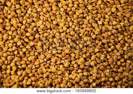 Background of the brown raw buckwheat. Vegan food