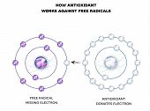 How antioxidant works against free radicals. Antioxidant donates missing electron to Free radical now all electrons are paired. poster