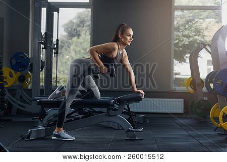Sexy athletic woman pumping up muscles with dumbbells at gym. Hot girl, with hair, laid in tail, doing workout wearing in beautiful sports uniform against gym equipment. Sport and lifestyle concept. poster