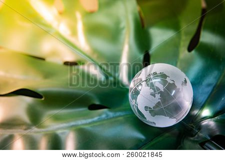 World Globe Cystal Glass On Green Lush Leaf. Environmental Conservation. World Environment Day. Glob