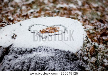 The Heart Is Painted On The Snow. A Dry Oak Leaf In The Heart On The Snow. Snow-covered Stump In The