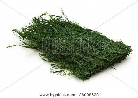 dried green laver, aonori, japanese food