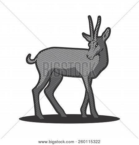 Vector Element Cartoon Deer. Deer Icon Art. Deer Icon Eps. Deer Icon Image. Deer Icon Logo. Deer Ico