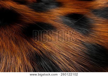 Animal Fur Spotted Texture Of Leopard Extreme Closeup. 3d Rendering
