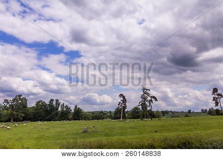 Summer cloudy day landscape with sheep grazing in Warwickshire, England , UK poster