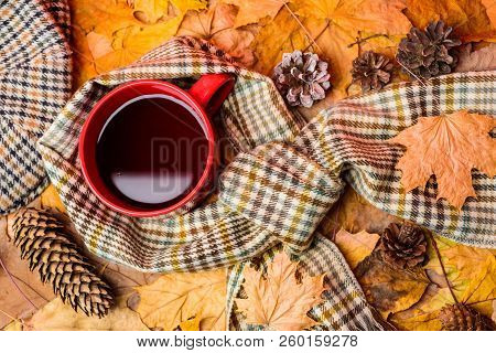 Mug Of Tea Covered Surrounded By Scarf Autumnal Background With Fallen Maple Leaves And Fir Cones. M