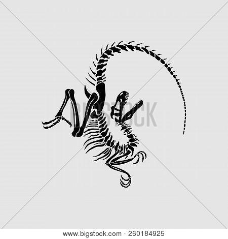 Graphic Print Of Velociraptor Skeleton. Black And White.