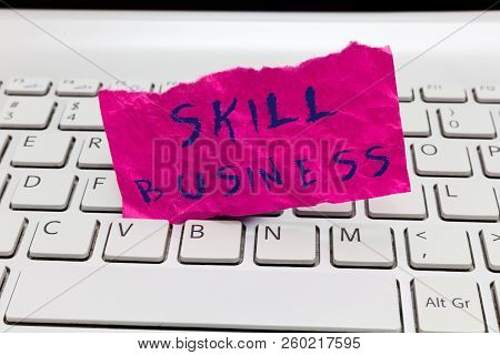 Word Writing Text Skill Business. Business Concept For Ability To Handle Business Venture Intellectu