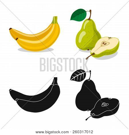 Isolated Object Of Vegetable And Fruit Logo. Set Of Vegetable And Vegetarian Stock Vector Illustrati