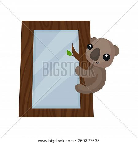Cute Photo Frame With Koala Bear, Album Template For Kids With Space For Photo Or Text, Card, Pictur