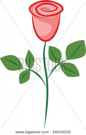 Vector image of a red rose