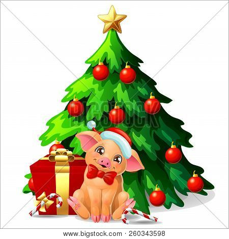 Cute Yellow Pig Ang Fir Tree On White