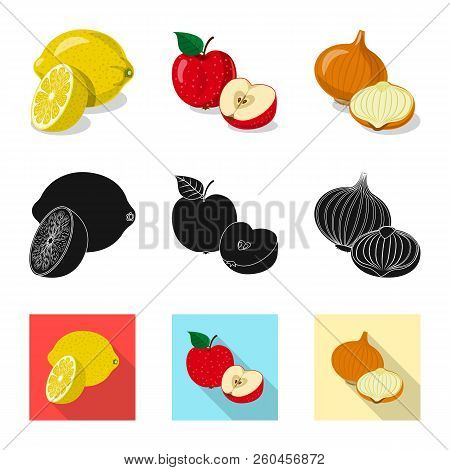 Vector Illustration Of Vegetable And Fruit Symbol. Set Of Vegetable And Vegetarian Vector Icon For S