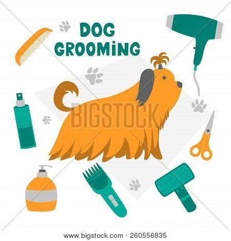 Vector Illustration For Pet Hair Salon, Styling And Grooming Shop, Pet Store For Dogs And Cats.