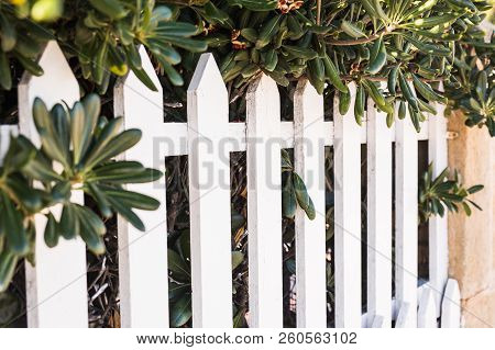 County Style White Wooden Fence. White Fence In Perspective