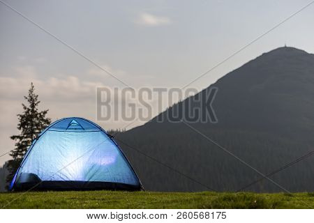 Tourist Hikers Bright Blue Tent On Green Grassy Forest Clearing Among Tall Pine Trees Under Clear Mo