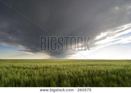 Prairie Sky Landscape
